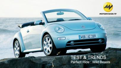 test-trends-perfect-ride-wild-beasts